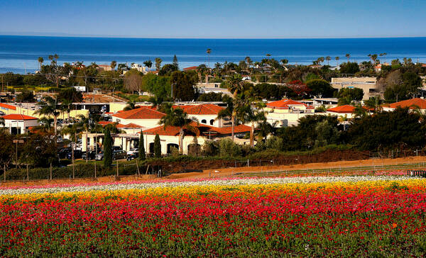 Carlsbad Californie