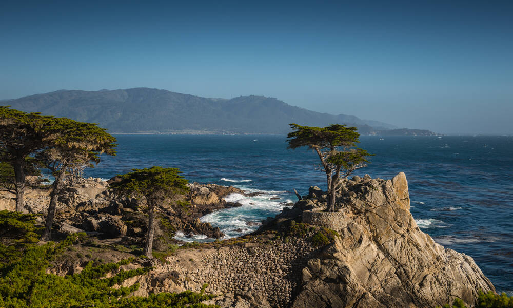 Lone Cypress, 17 mile drive