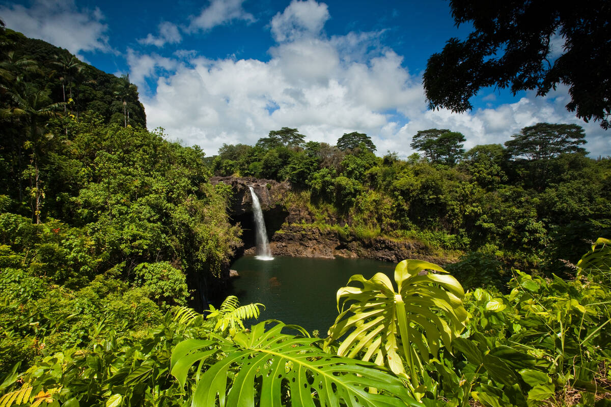 Vakantie Hawaii - Tioga Tours