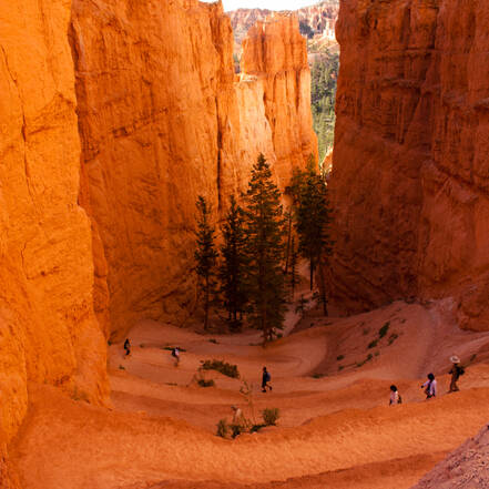 wandelen in bryce canyon national park