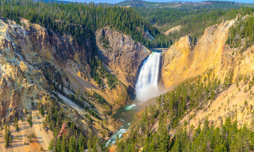 Grand Canyon in Yellowstone National Park