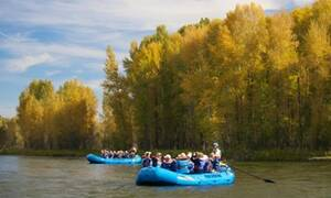 Jackson Hole Whitewater