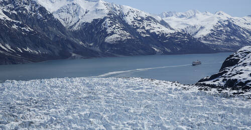 Cruise Glacier Bay